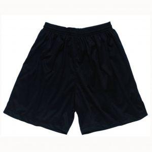 Black Shadow Shadow Stripe Shorts