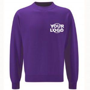 Scienta Crew Sweatshirt (Reception to Year 4)