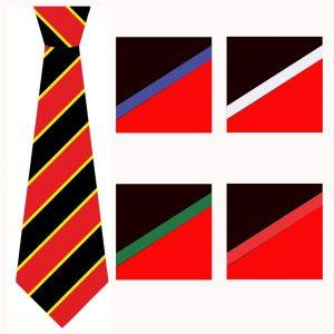 Bishop Milner Boys House Tie