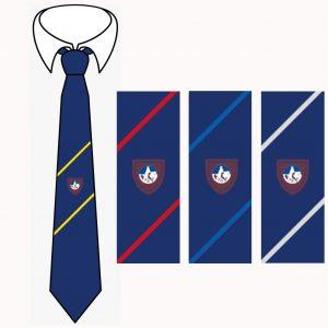The Wordsley School House Tie